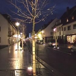 Neue Straßen- und Baumbeleuchtung