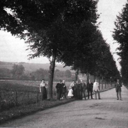 Lindenallee in Richtung Schloß Auel. Die Straßenabzweigung in Richtung Birken ist noch nicht gebaut.