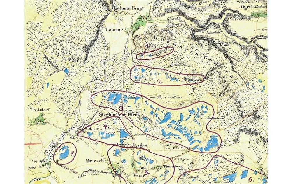 Teichlandschaft um 1845
