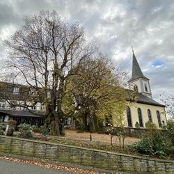 Die über 450 Jahre alte Femelinde bildete zusammen mit der evangelischen Kirche und dem Marktplatz den gesellschaftlichen Mittelpunkt des alten Wahlscheid. Feme ist der Begriff für die mittelalterliche Gerichtsbarkeit.