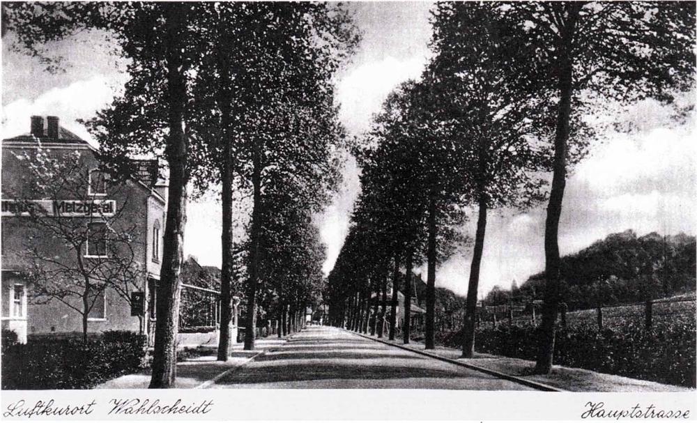 Postkarte von 1941, Blick in Richtung Auelerhof