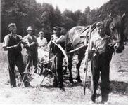 Heuernte im Naaßachtal Anfang der 1930er Jahre.