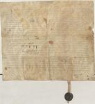 Vorderseite der Original-Urkunde in lateinischer Sprache