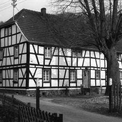 Haus Broich 1984 mit Lindenbaum