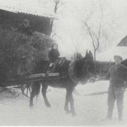 Karl Oberdörster, Schönenberg, im Jahre 1939 mit seinem Anfang der 30er Jahre erworbenen Maulesel, auf dem Sohn Kurt sitzt.