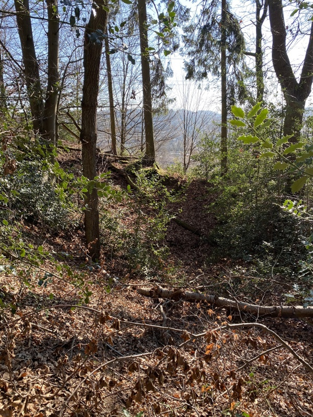 Pinge (trichterförmige Vertiefung durch Bergbau)